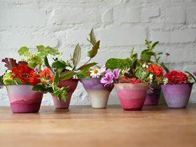 七种纸杯DIY
