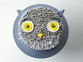 DIY灰色猫头鹰蛋糕